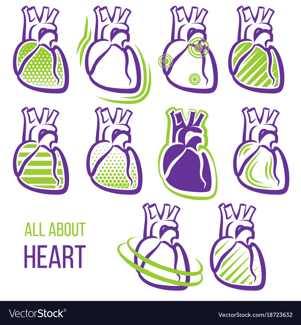 All about heart vector image