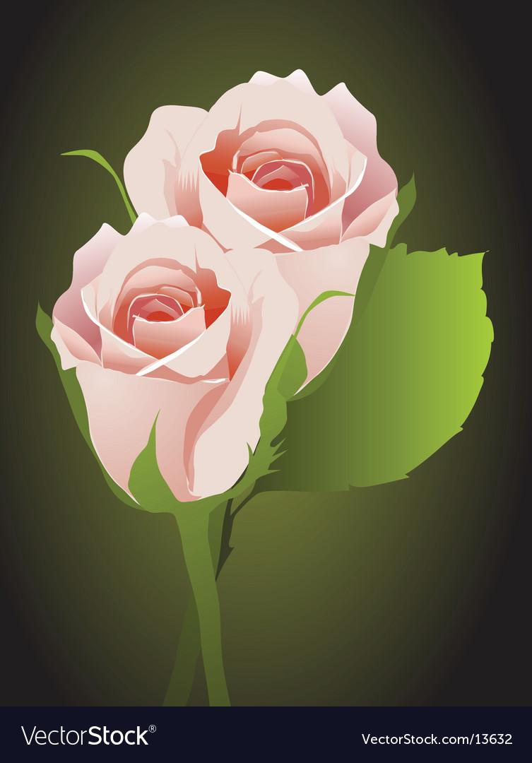 Rosebuds floral background