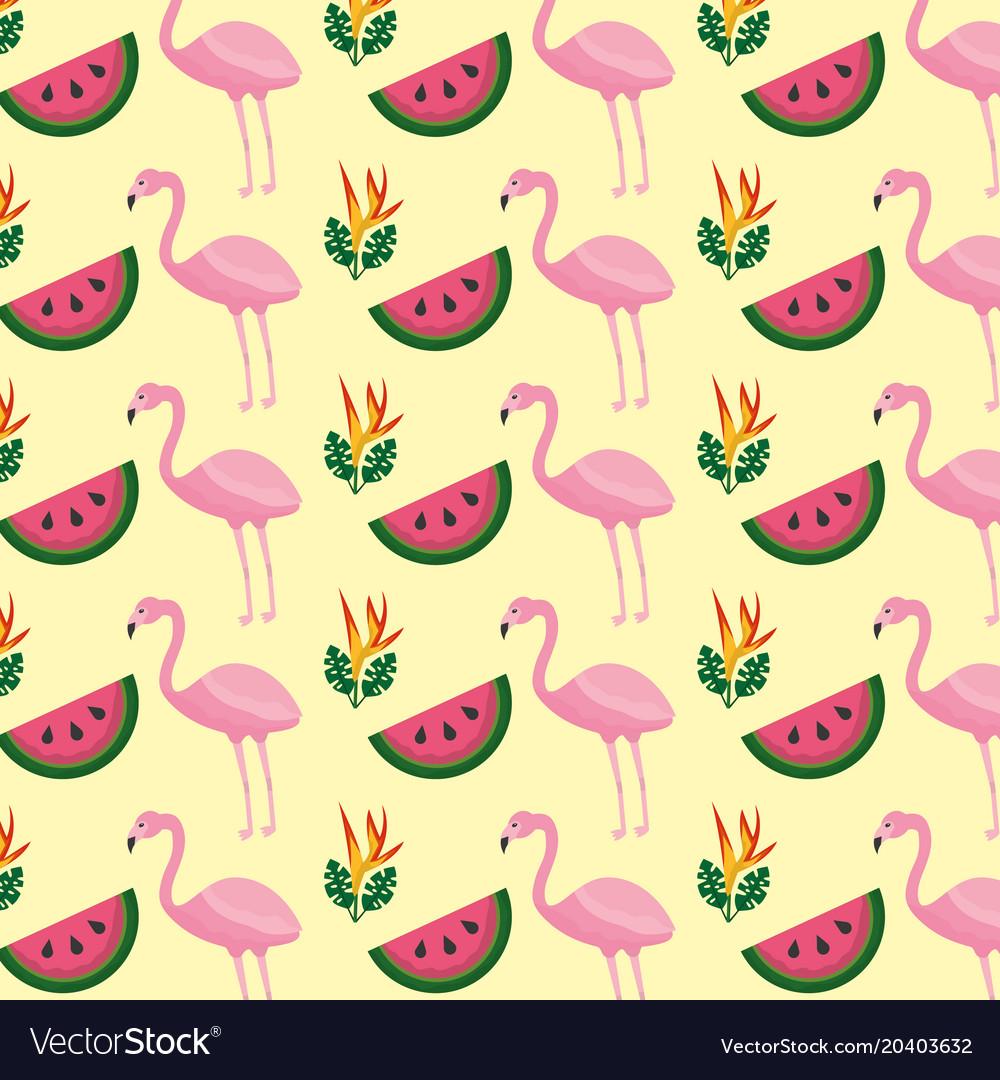 Tropical flamingo watermelon flower background