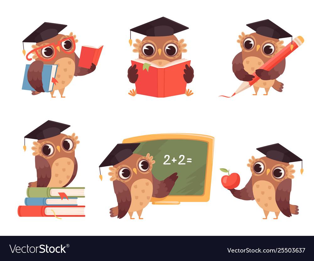 Owl teacher cartoon bird characters with back to