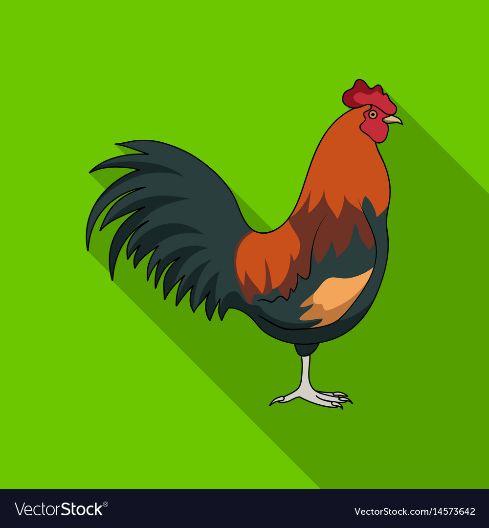 Home cockanimals single icon in flat style vector image