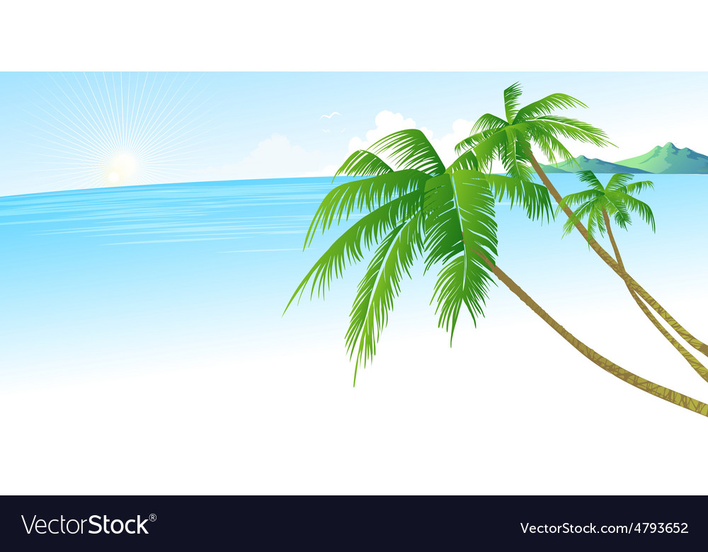 Summer holidays background with palm