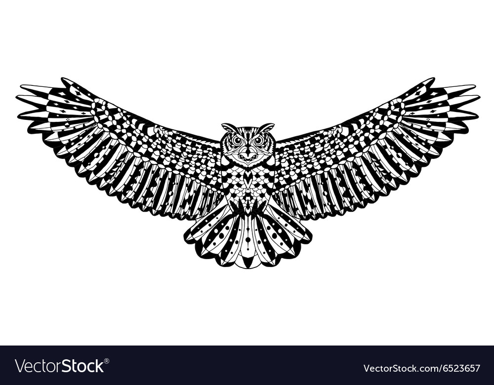 Eagle owl bird animals hand drawn doodle ethnic