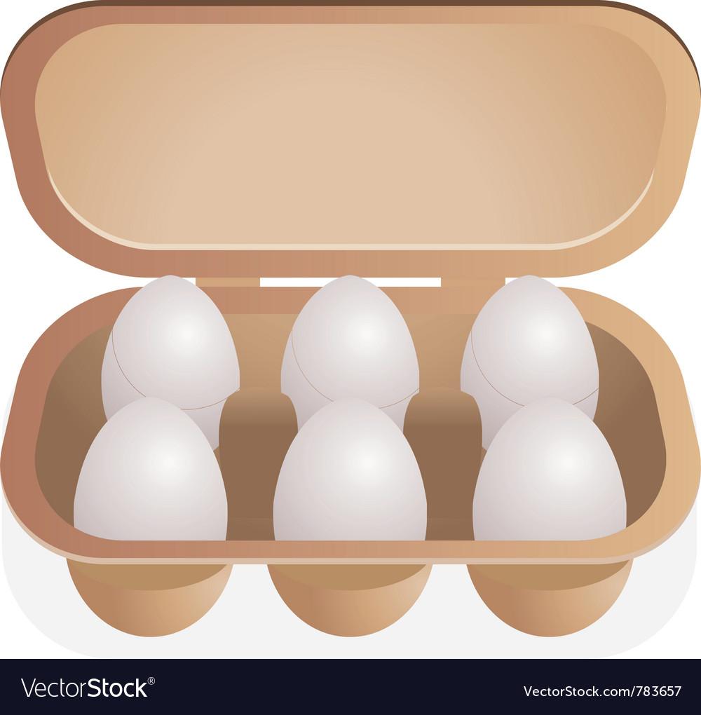 Eggs in box vector image