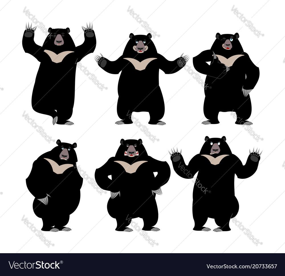 Himalayan bear set emotion and posture cheerful vector image