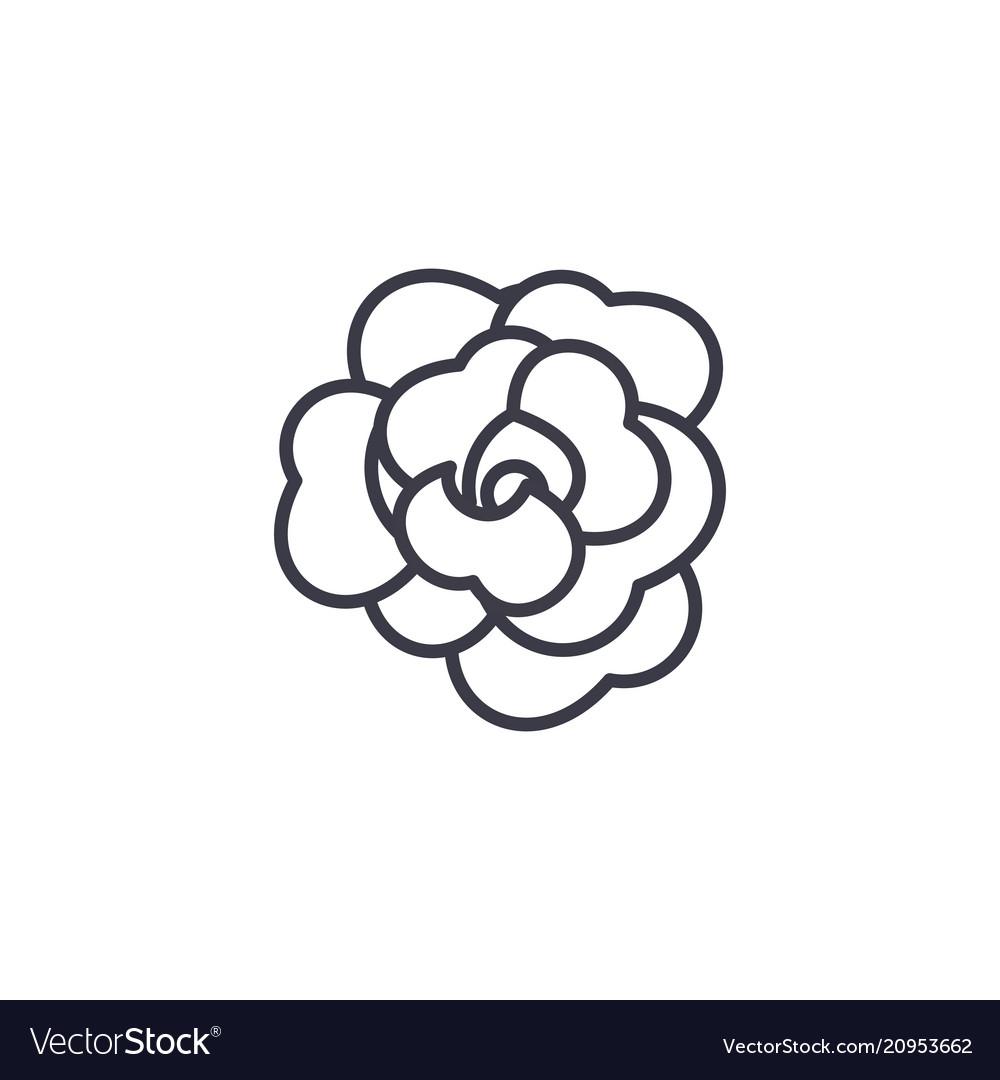 Rose flower line icon concept rose flower flat vector image