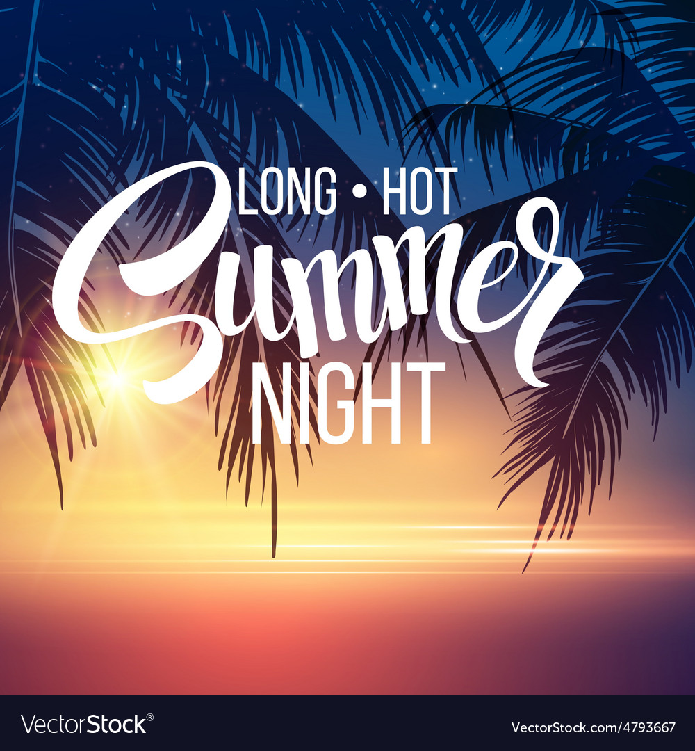 Summer night palm trees in night