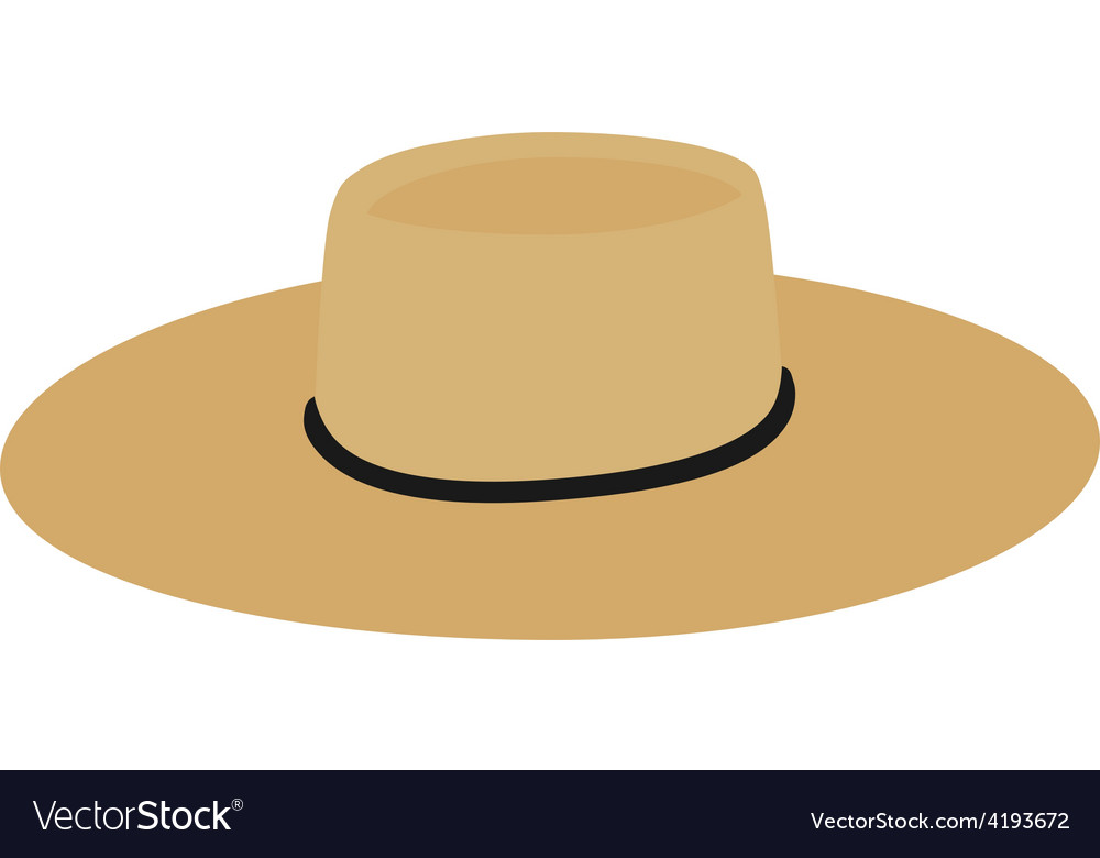 Straw hat vector image