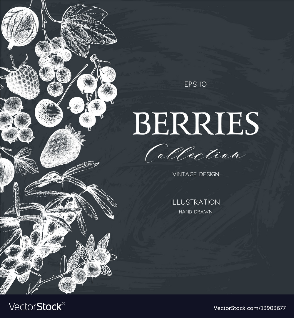 Card with hand drawn berries
