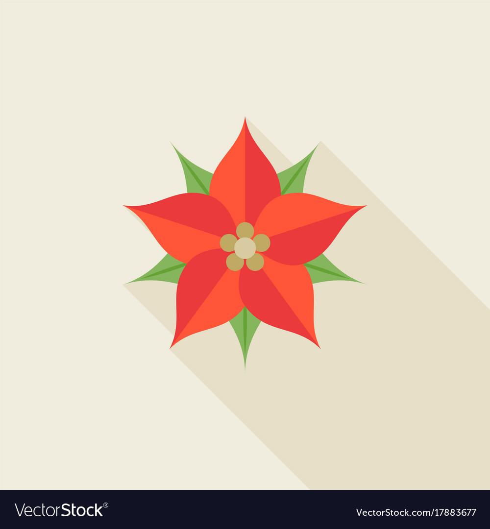 Christmas flower or poinsettia vector image