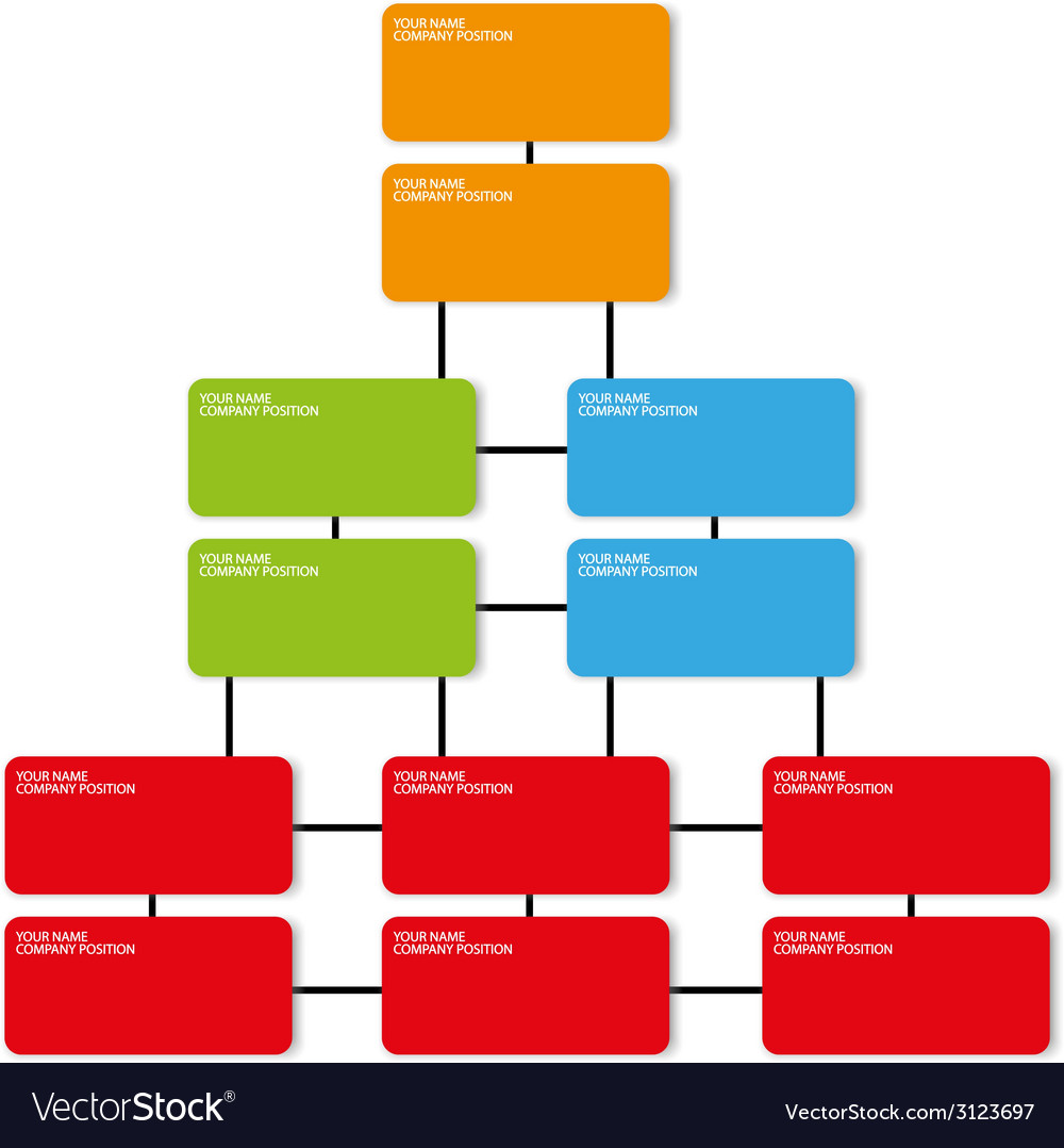 Company position organization template
