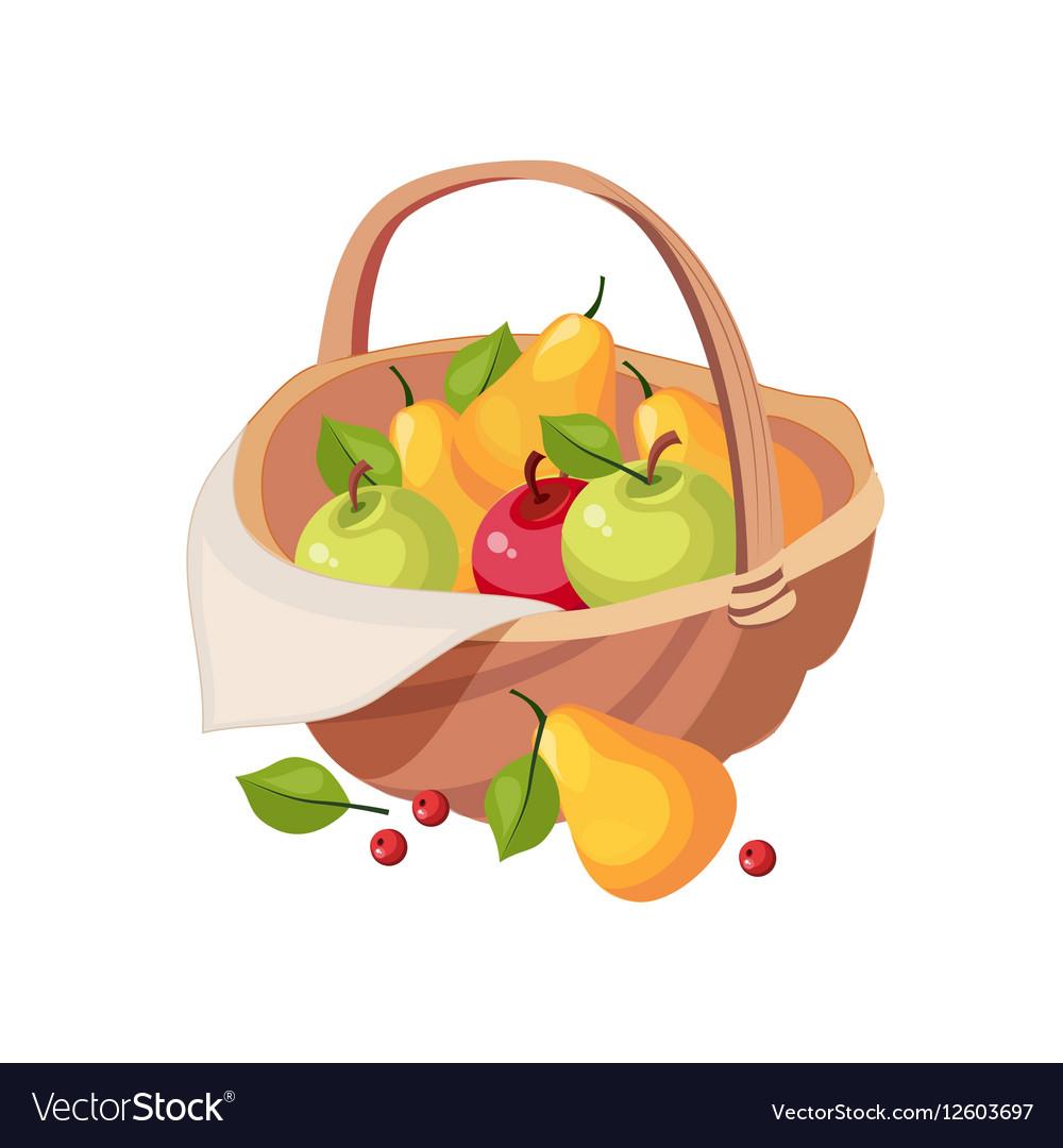 Fresh Garden Fruit Harvest In Wicker Picnic Basket