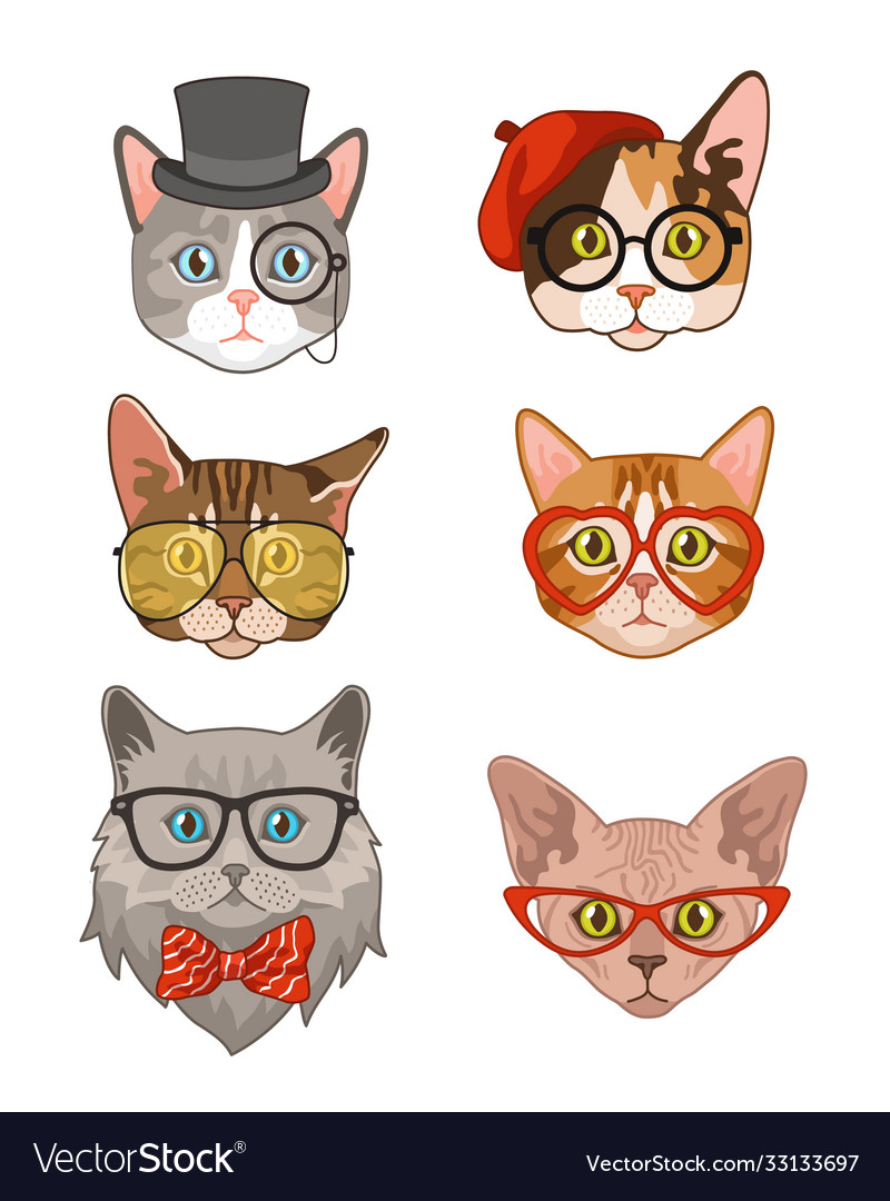Hipster cat funny cats avatar with hats