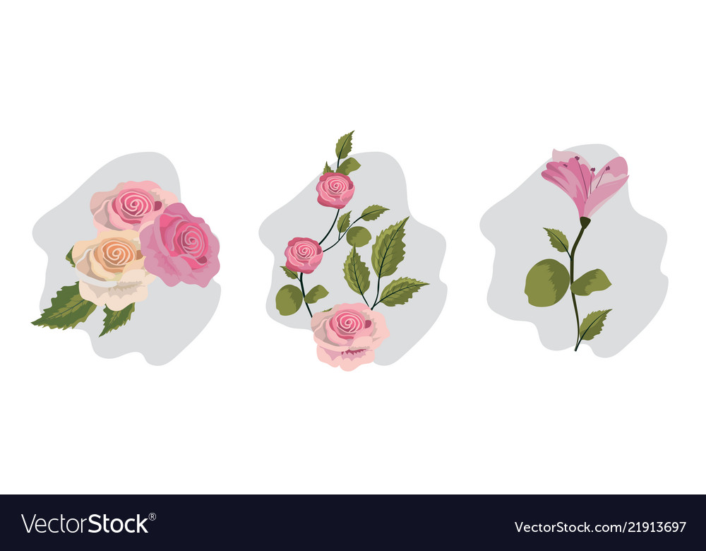 Set vintage flowers vector