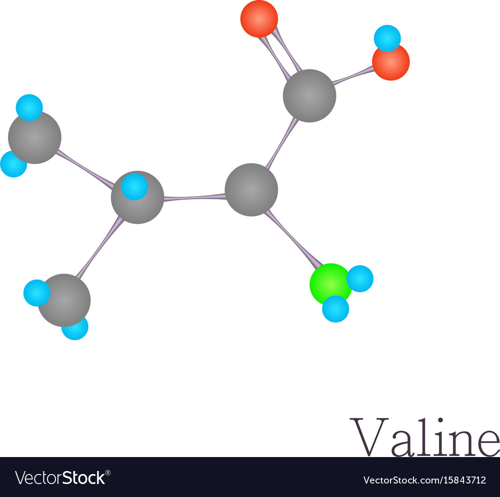 Valine 3d molecule chemical science cartoon style vector image