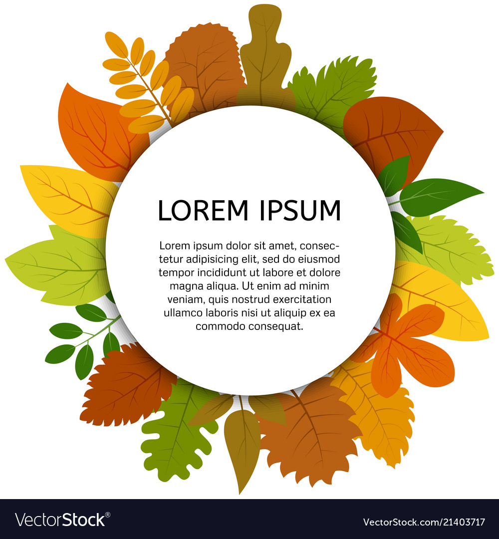 Colorful autumn leaves under white round label