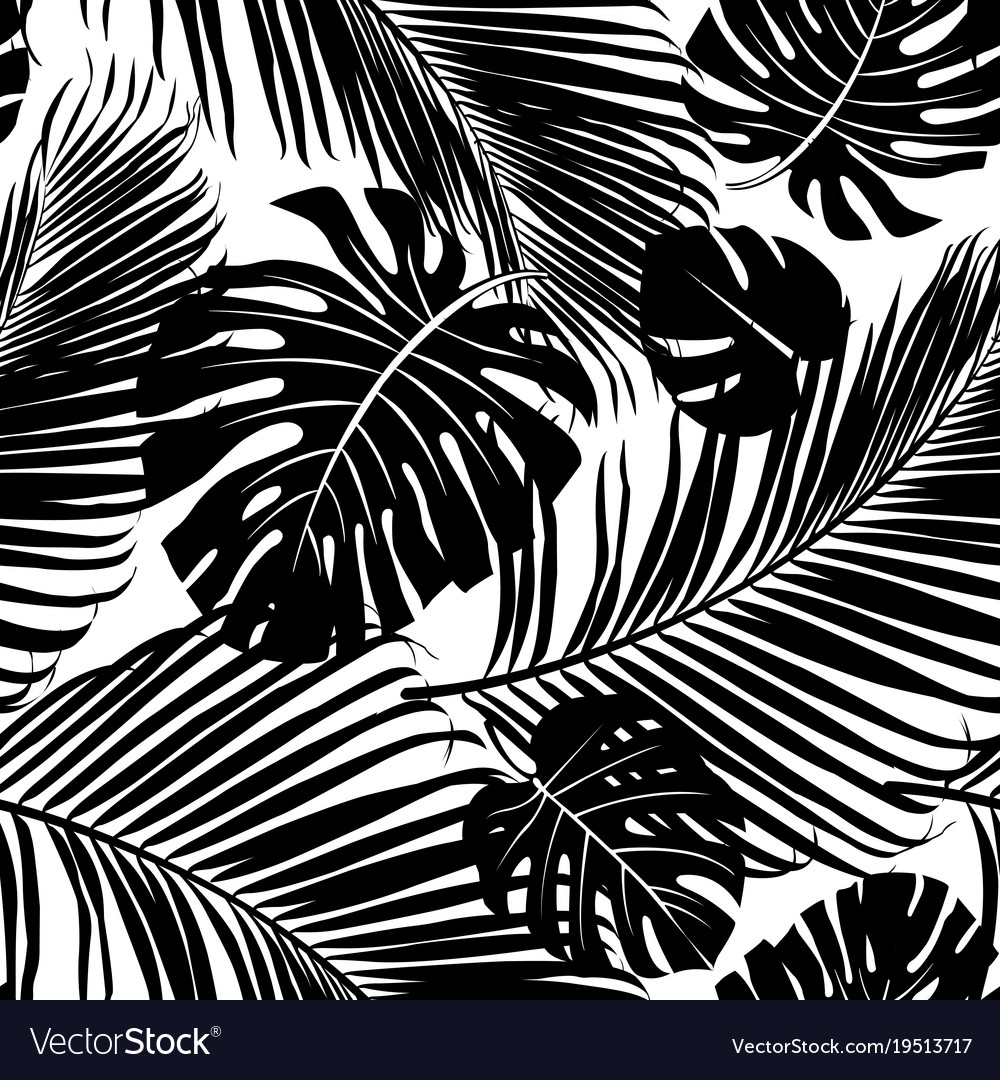 seamless pattern palm tree leaves royalty free vector image