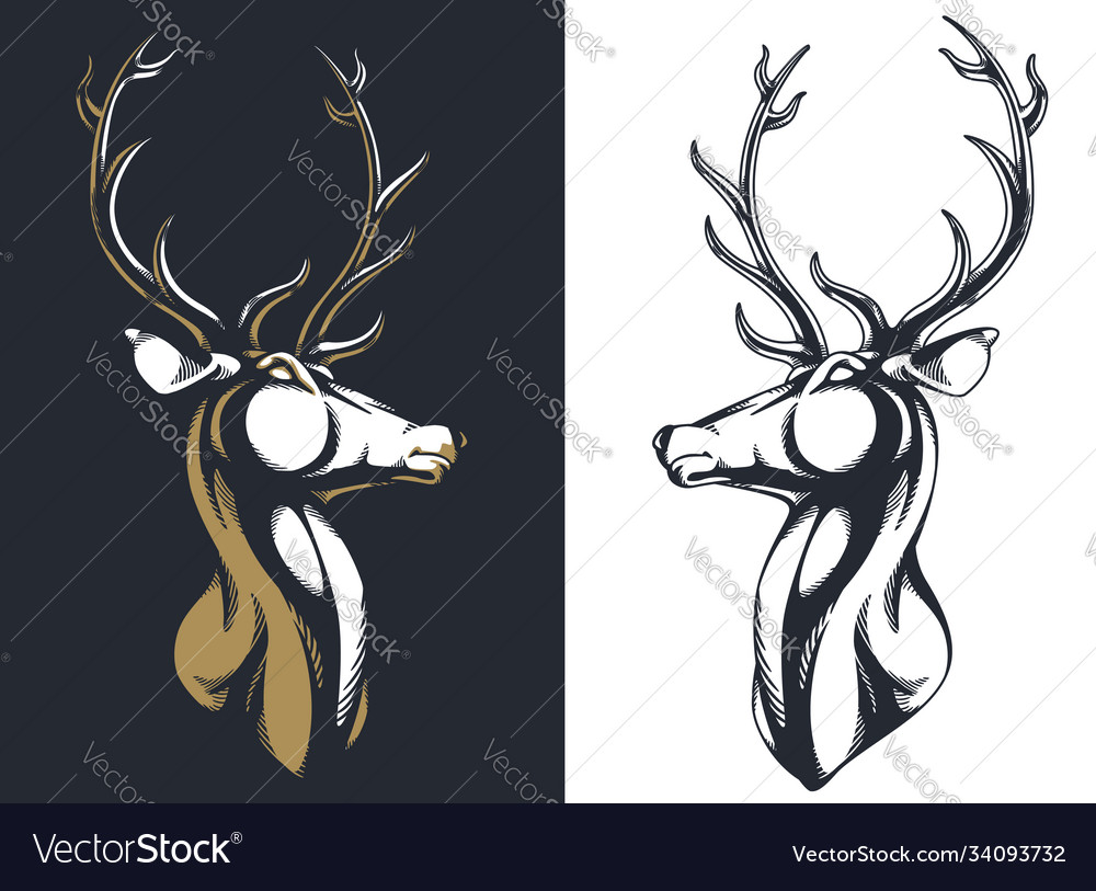 Silhouette stag buck elk deer head antlers