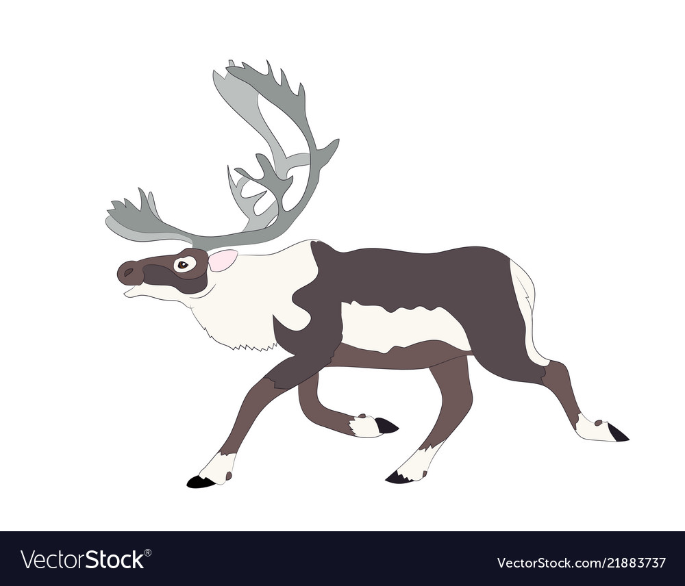 Drawing of the deer which runs