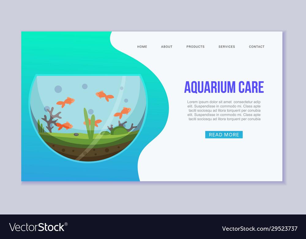 Fish aquarium with golden fishes web