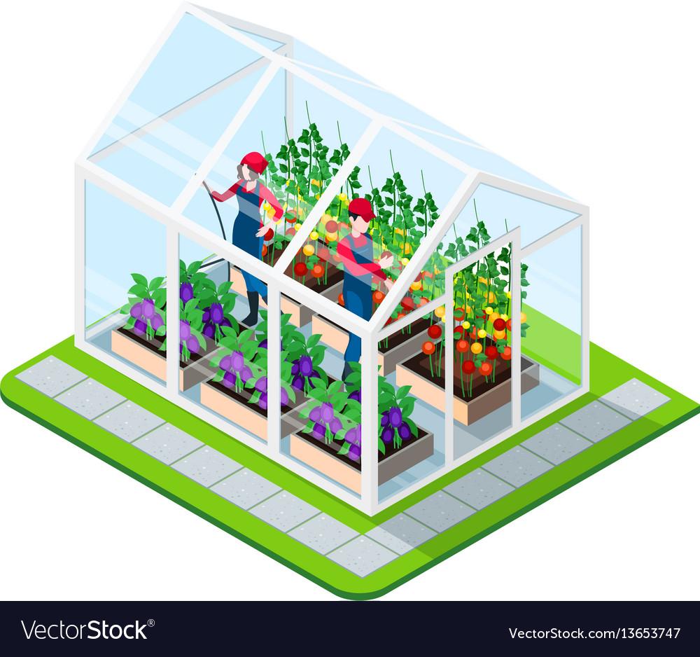Greenhouse isometric concept