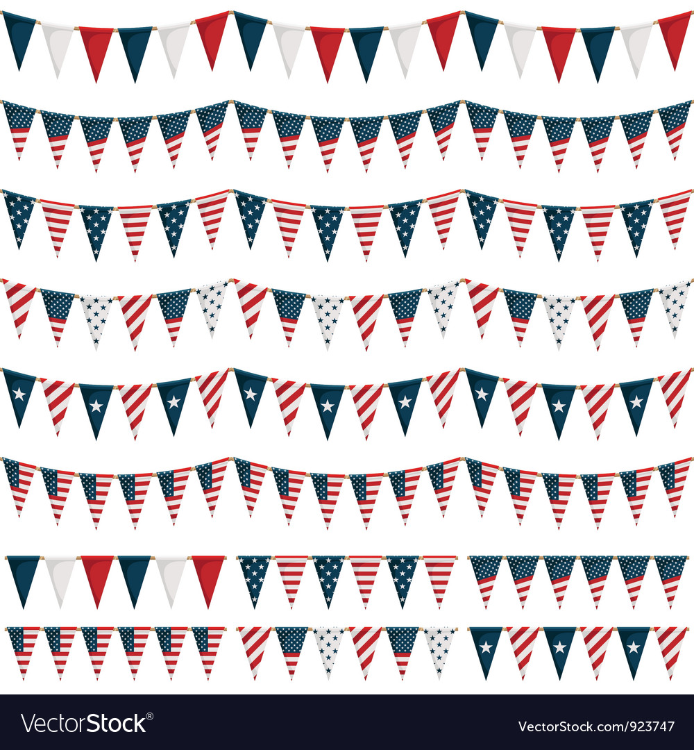 Usa party bunting vector image