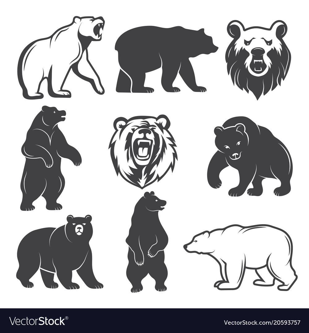 monochrome of stylized bears royalty free vector image rh vectorstock com bear factory beer victoria london