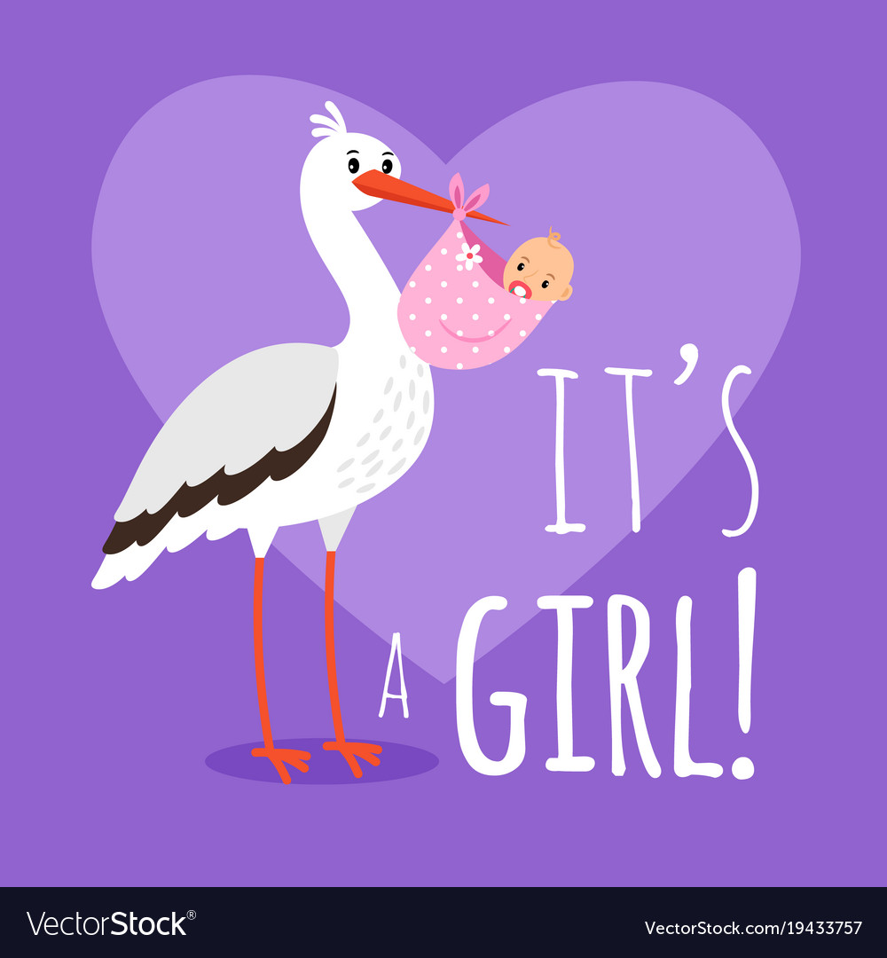 Stork with baby girl vector image