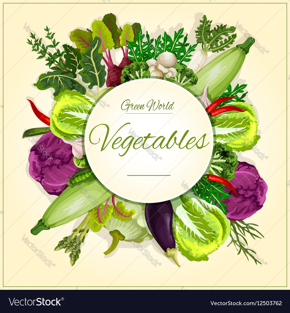 Vegetable mushroom and salad leaf poster design vector image