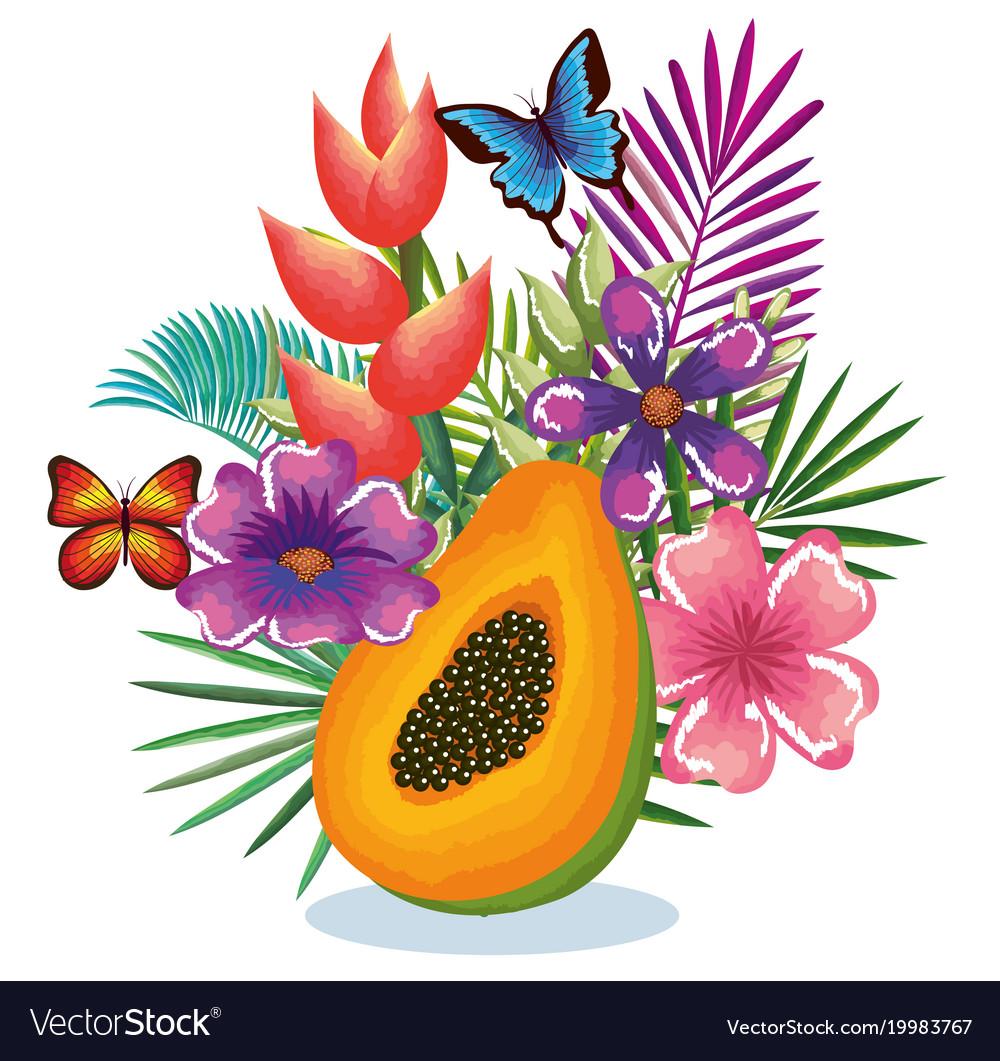 Tropical garden with papaya