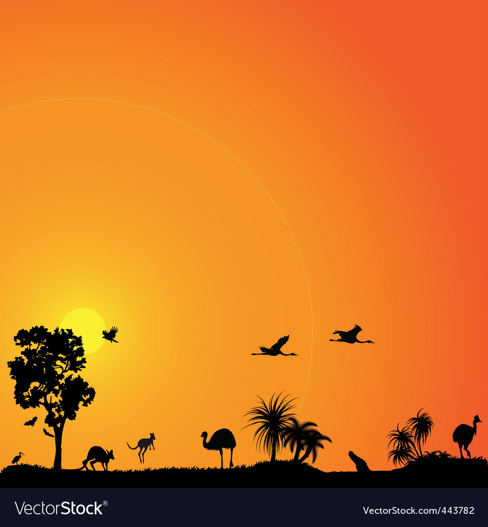 Vector background with austral vector image