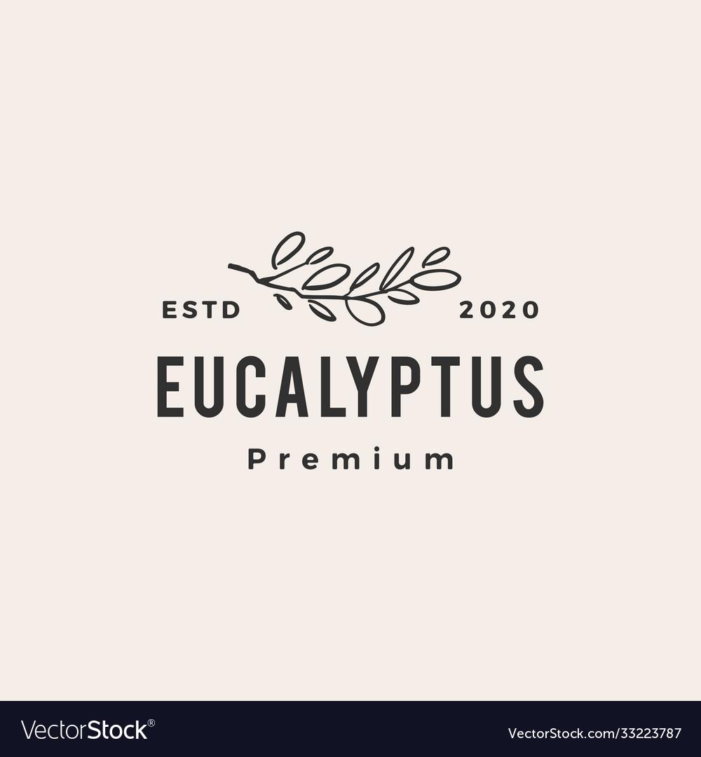 Eucalyptus hipster vintage logo icon
