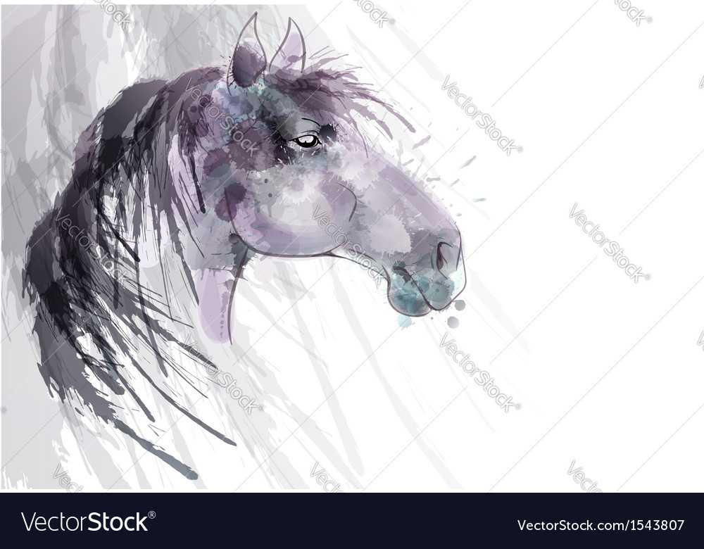 Horse head watercolor painting vector image