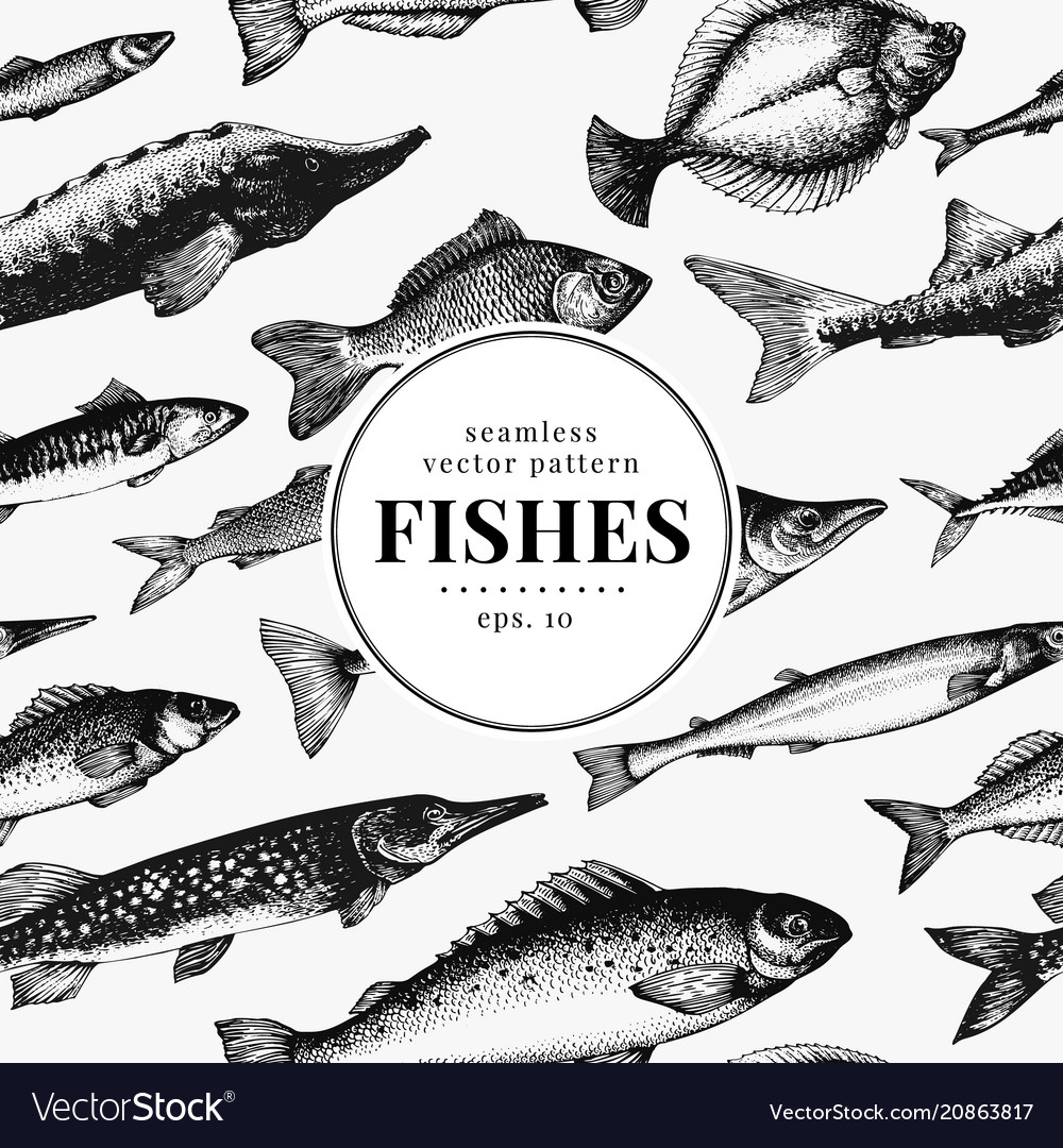 Fish seamless pattern can be use for