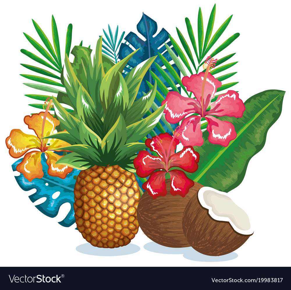 Tropical garden with pineapple and coconut