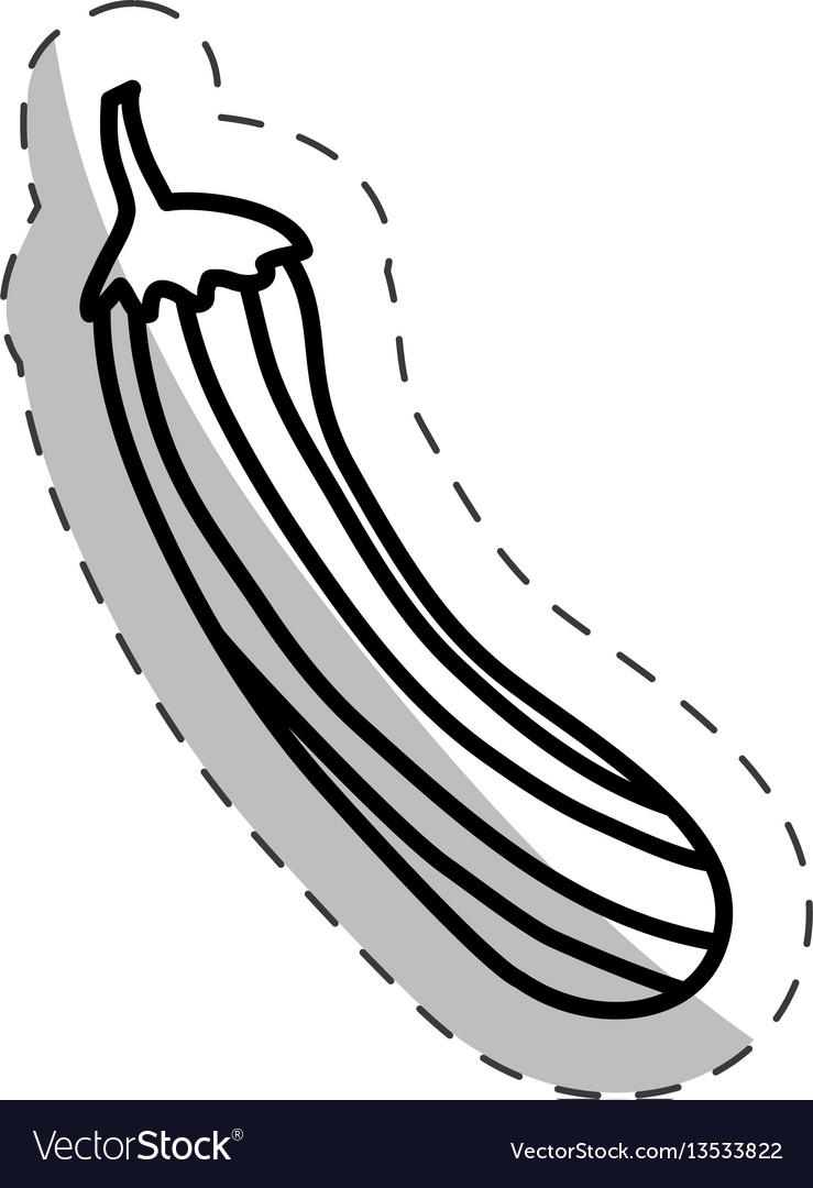 Cucumber vegetal diet cut line vector image