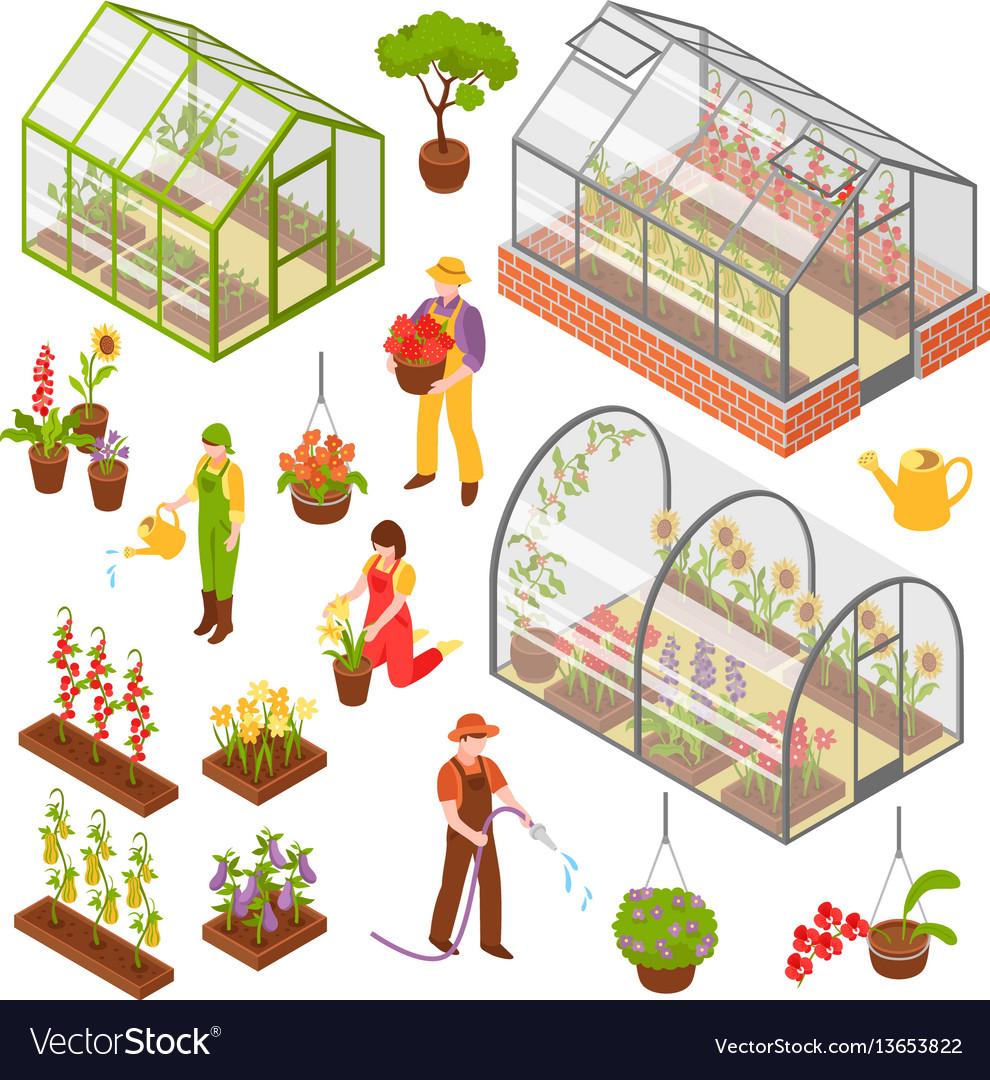 Isometric 3d greenhouse icon set