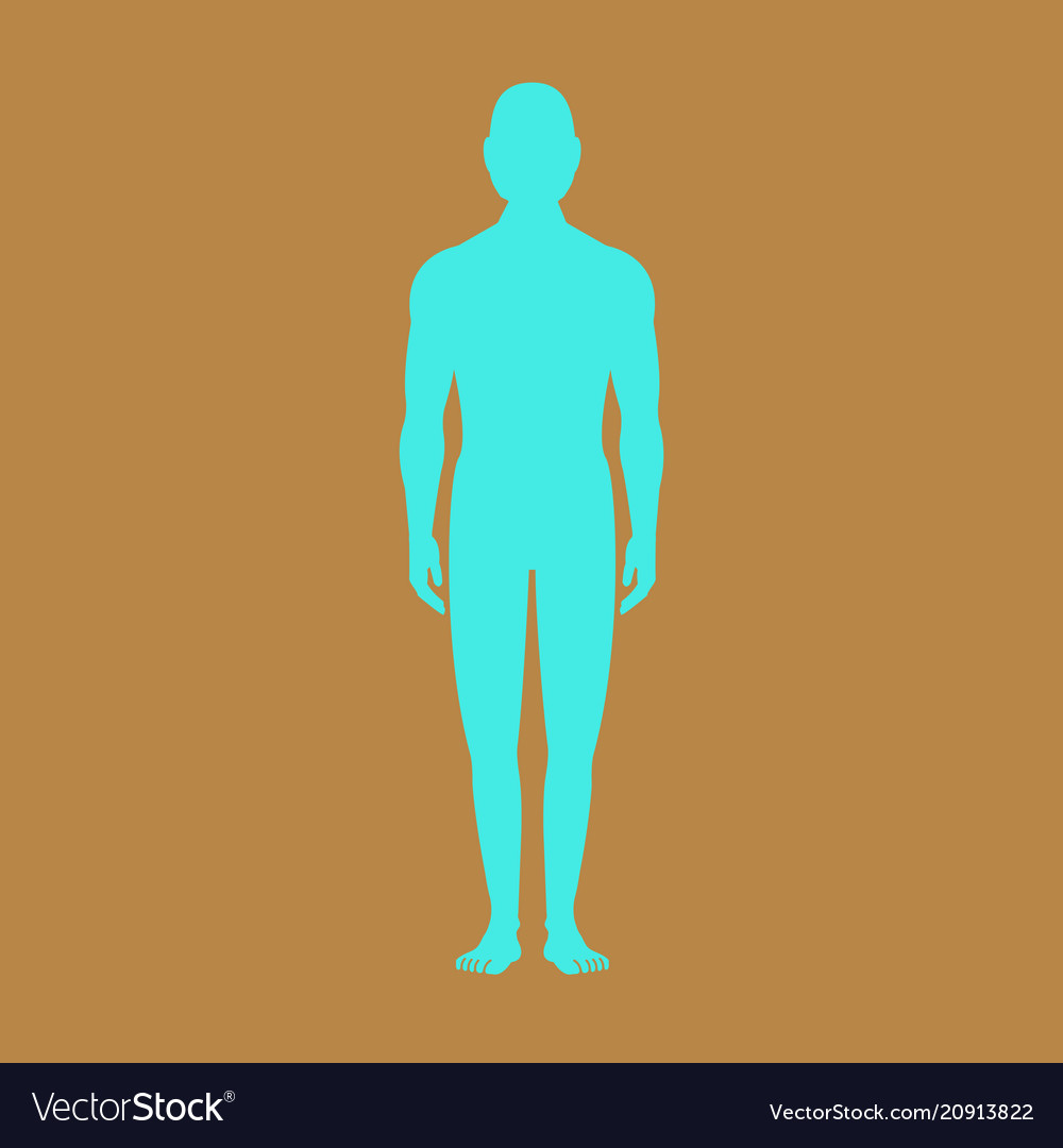 Male human body silhouette with shadow