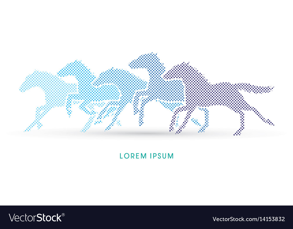 5 horses running