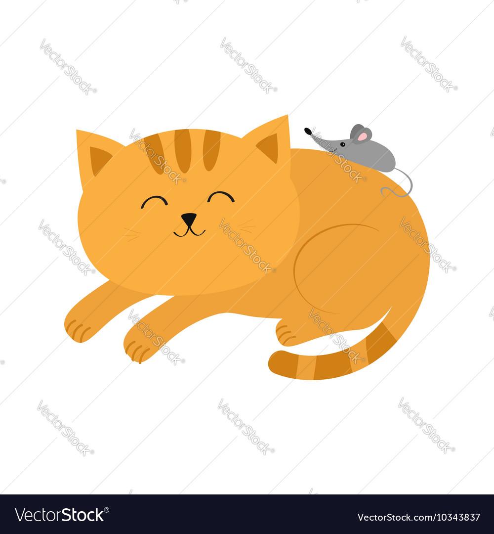 Cute lying sleeping orange cat with moustache
