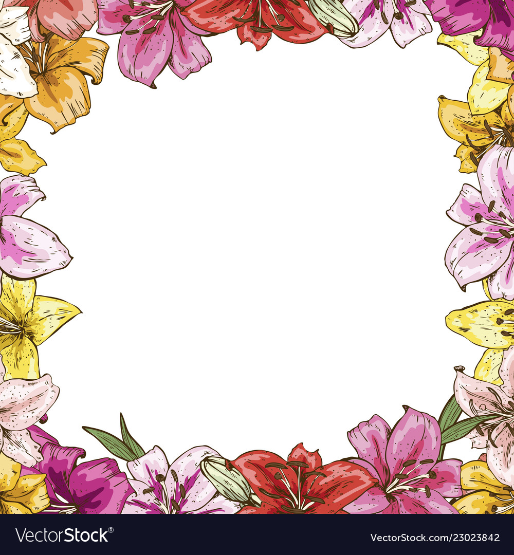 frame of flowers beautiful frame of colorful vector image vectorstock