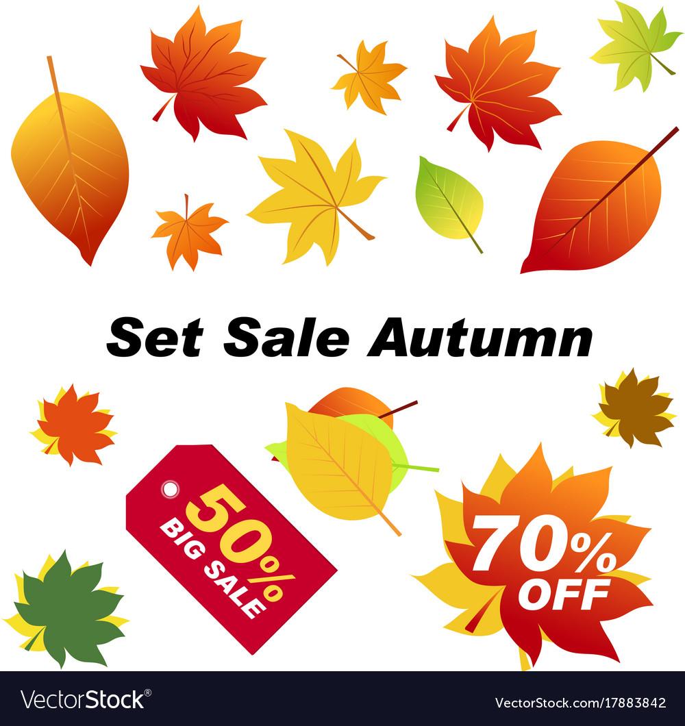 Set sale autumn autumn elements for your banners