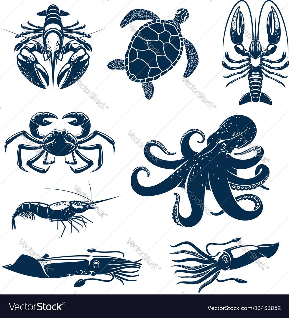 Seafood marine animal icon set for food design