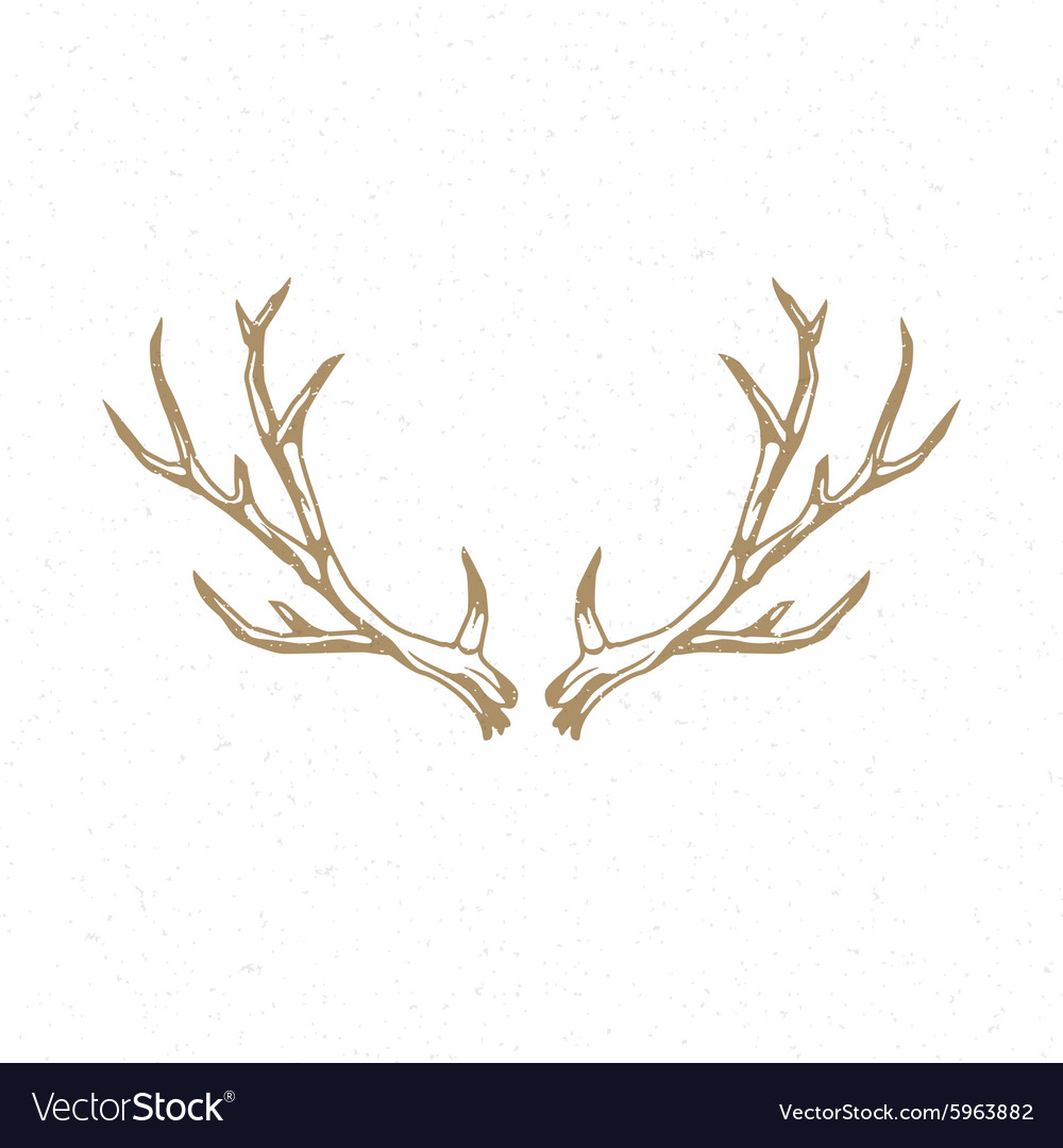 Deer Horns hand drawn logo emblem template vector image