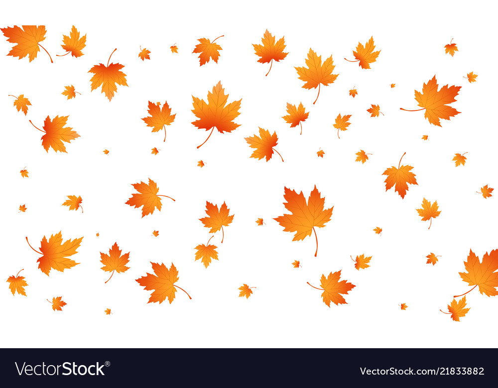 Fall autumn leaves background flying maple leaves