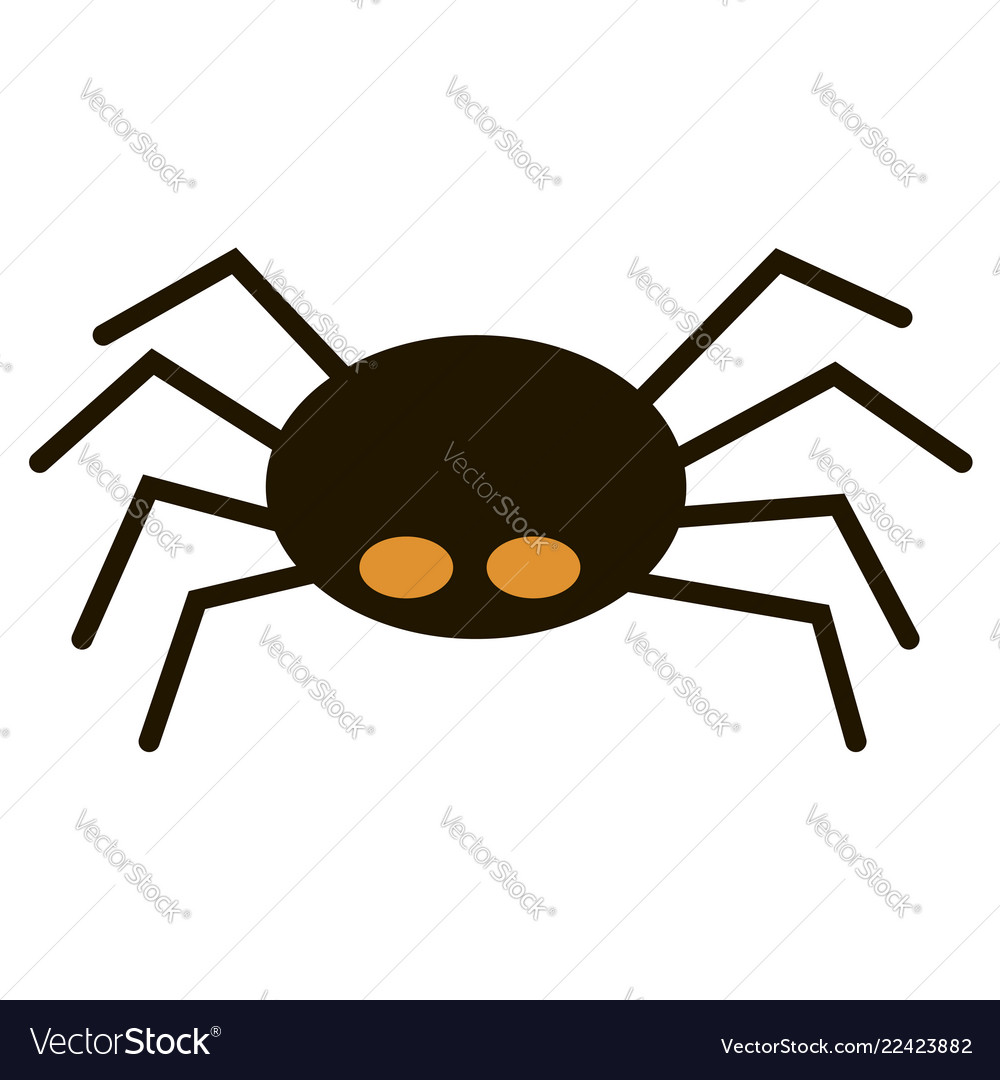 Scary big black spider isolated on white