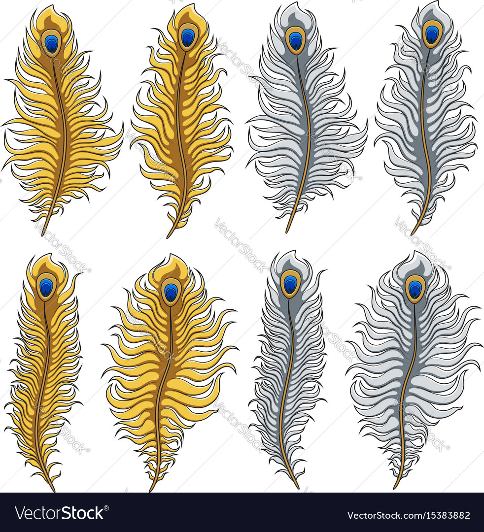 Set of images of gold and silver peacock feathers