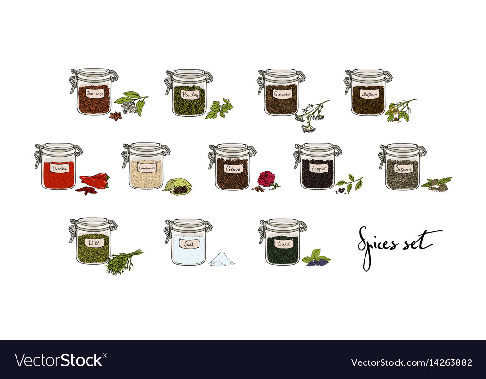 Spices in jars big set part 2 collection hand