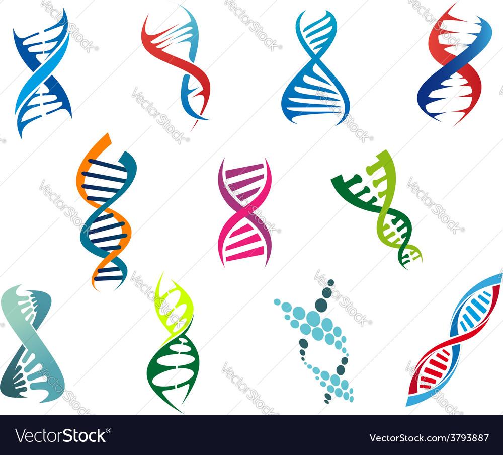 DNA molecules and symbols