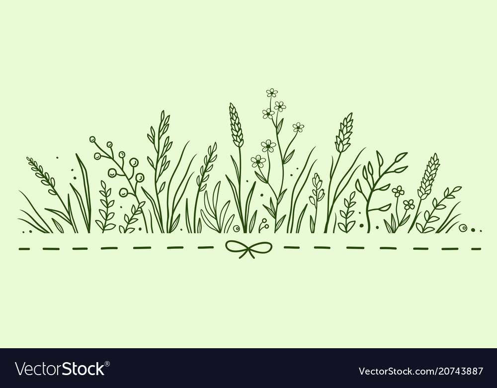 Green pattern with herbs and flowers